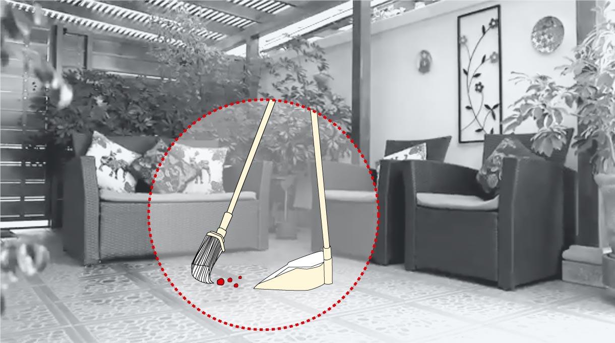 limpiar el espacio para perros y gatos en casa