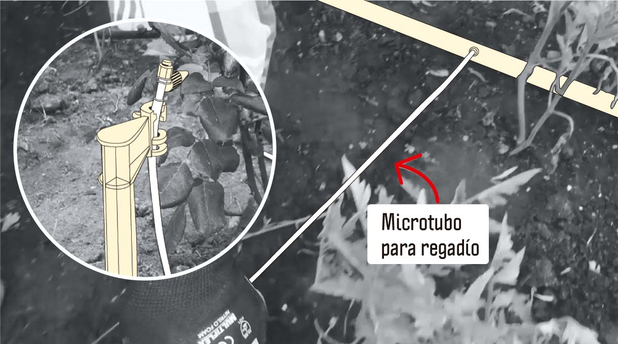 microtubo para regadío