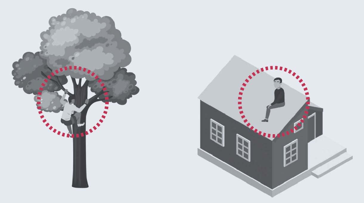 subirse a la copa de un árbol o al techo de una casa en caso de aluvión