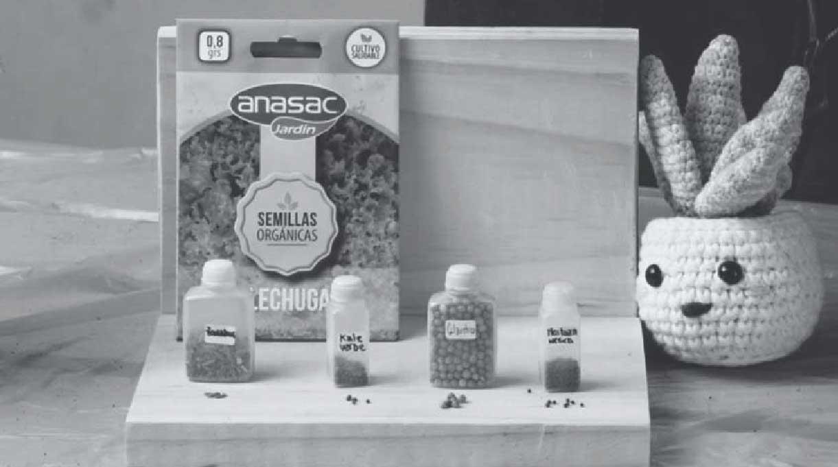 semillas de distintas hortalizas