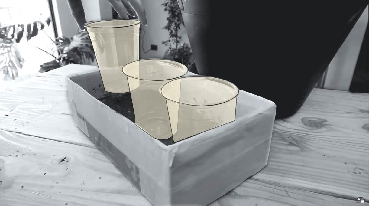 colocar los 3 vasos uno al lado del otro encima de los cilindros